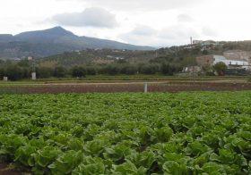 El GDR Subbética apoya el ciclo de Grado Medio Técnico en Producción Agroecológica