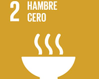 ODS 2.- HAMBRE CERO