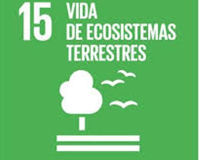 ODS 15.- VIDA DE ECOSISTEMAS TERRESTRES.